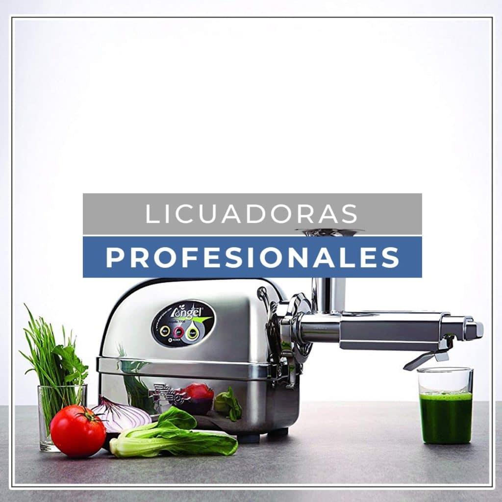 Licuadora industrial / profesional