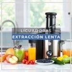 Licuadora extracción lenta